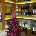 JPタワー名古屋のクリスマスツリー 2017 No - 7