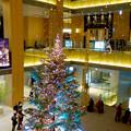 JPタワー名古屋のクリスマスツリー 2017 No - 11