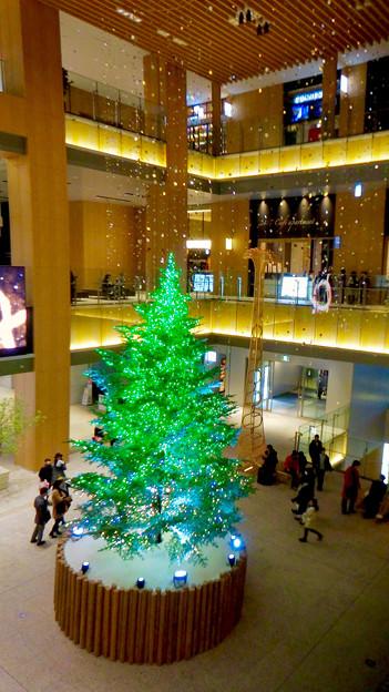 JPタワー名古屋のクリスマスツリー 2017 No - 12