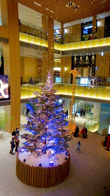 JPタワー名古屋のクリスマスツリー 2017 No - 13