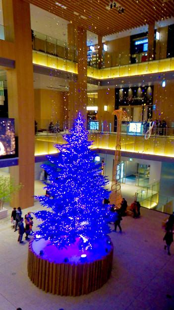 JPタワー名古屋のクリスマスツリー 2017 No - 15