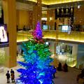 JPタワー名古屋のクリスマスツリー 2017 No - 18