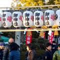 写真: 戌年で賑わう2018年正月の「伊奴(いぬ)神社」 - 4