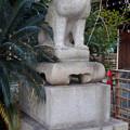 写真: 戌年で賑わう2018年正月の「伊奴(いぬ)神社」 - 7:狛犬