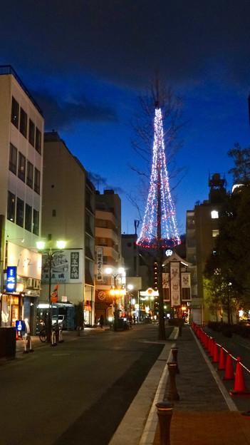 御園通商店街のクリスマスツリー? - 1