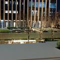 夜のグローバルゲート - 5:人がいなくなり、ひっそりとしていた夜の屋上庭園