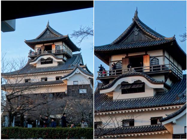 門の前から見上げた犬山城天守閣 - 1