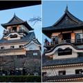 写真: 門の前から見上げた犬山城天守閣 - 1