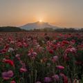 写真: 新しい朝が来た