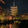 写真: そうだ 京都、行こう 1