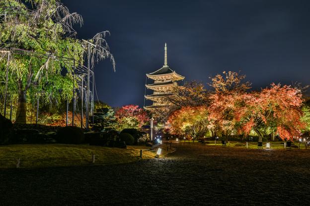 そうだ 京都、行こう 2