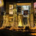 写真: Caretta Illumination 2017 1
