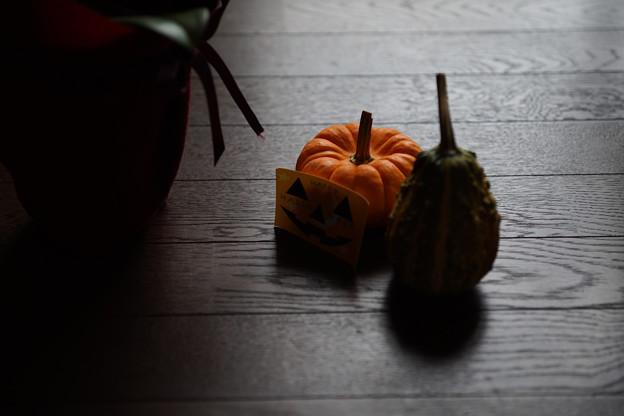 ハロウィン -物撮り習作-