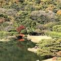 写真: 四國栗林公園