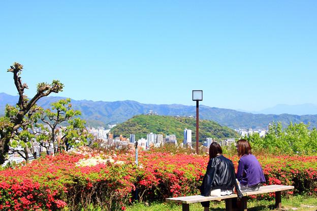 松山城展望