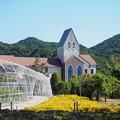 愛媛県タオル美術館