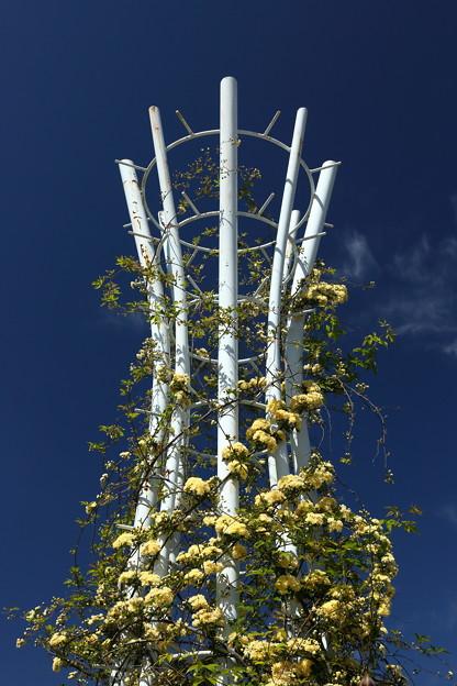 薔薇タワー