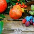 写真: 熟す果実