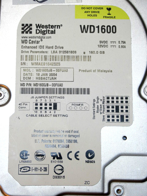 WD1600IMG_4263