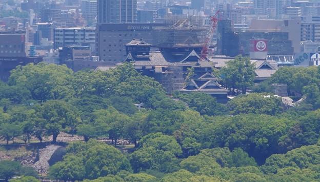 熊本城の復興状況