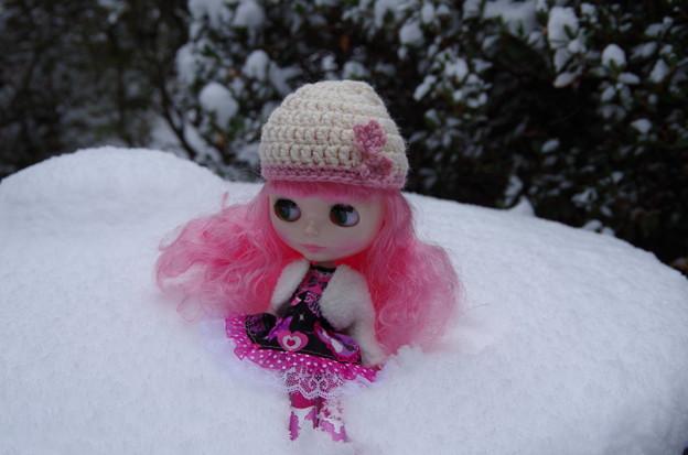 雪にダイブした~い!