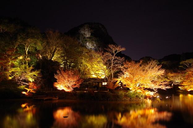 小船山楽園 ライトアップ
