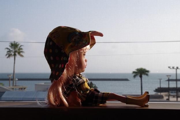写真: 旅館からの眺め