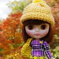 写真: 黄色い帽子の子