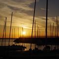 写真: 漁港の夕暮