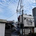 写真: 三島広小路駅近くで