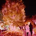 写真: 新宿サザンテラス