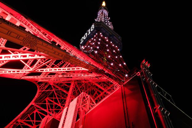 東京タワー2018その2