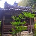 写真: 明月院開基廟 #湘南 #鎌倉 #kamakura #寺 #temple