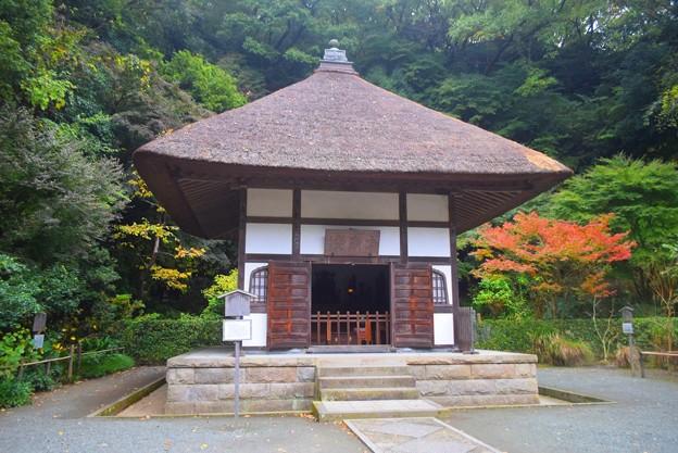 明月院 開山堂 #湘南 #鎌倉 #kamakura #寺 #temple #紅葉