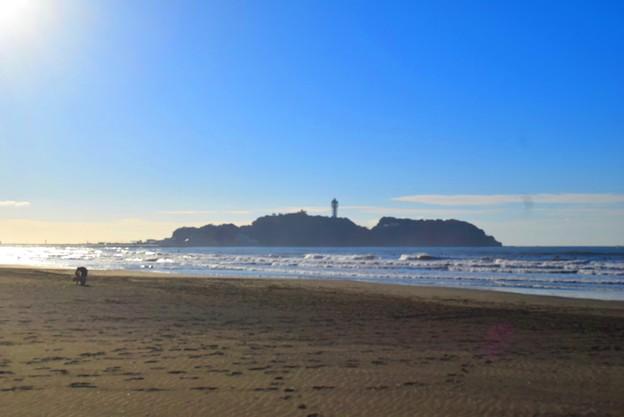 今朝の江ノ島 #湘南 #藤沢 #海 #波 #wave #surfing