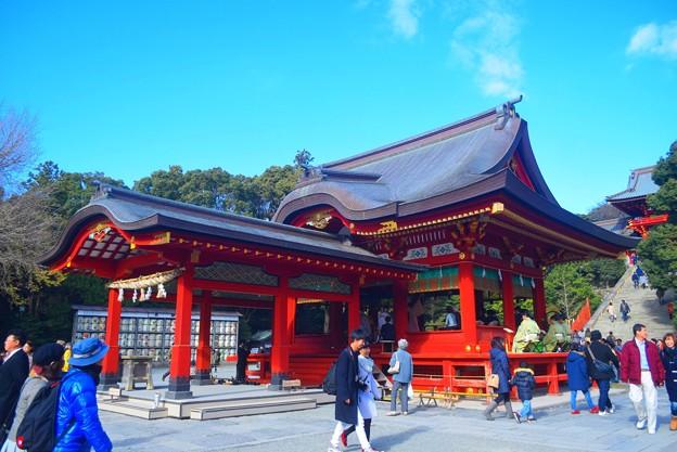鶴岡八幡宮舞殿 #湘南 #鎌倉 #kamakura #japan #mysky #神社 #shrine