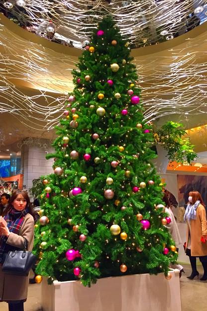 有楽町のクリスマスツリー #東京 #xmas #tokyo