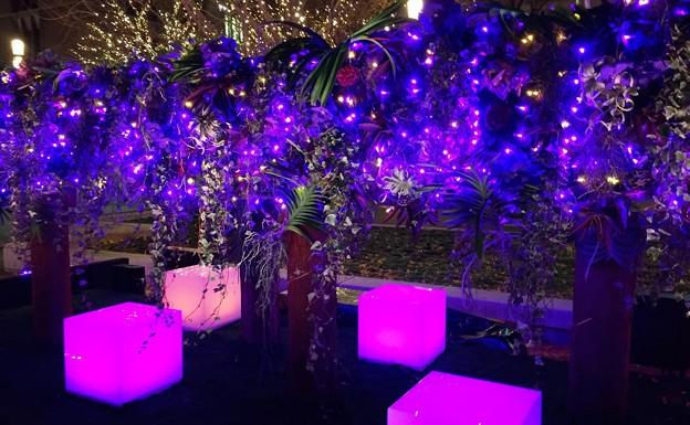 ニコライバーグマンプロデュースのイルミネーション #東京ミチテラス #イルミネーション #クリスマス #丸の内 #東京駅 #tokyo