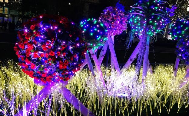 東京ミチテラスのイルミネーション #東京ミチテラス #イルミネーション #クリスマス #丸の内 #東京駅 #tokyo