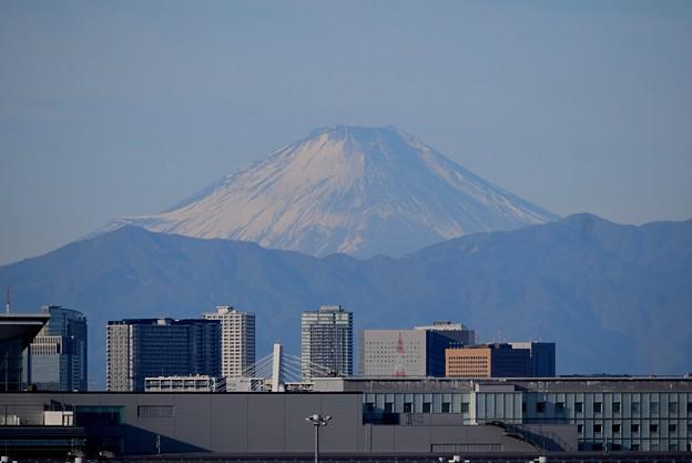 羽田空港からの富士山 #haneda #羽田空港 #羽田 #tokyo #airport #富士山 #mtfuji #富士山
