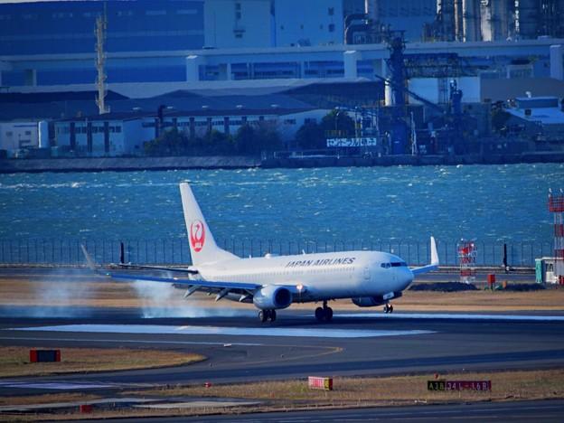 着陸する日航機 #haneda #羽田空港 #羽田 #tokyo #airport #jal #日本航空