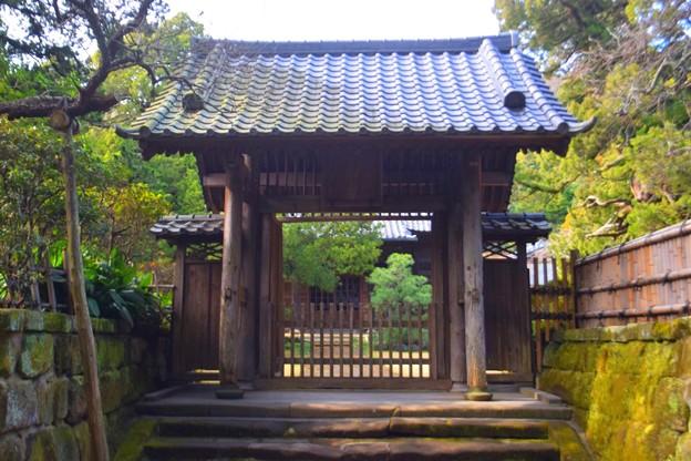 寿福寺 山門 #鎌倉 #kamakura #湘南 #temple #寺 #mysky