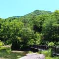 Photos: 西光寺山