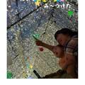 写真: 大きなお星さまみーつけた!