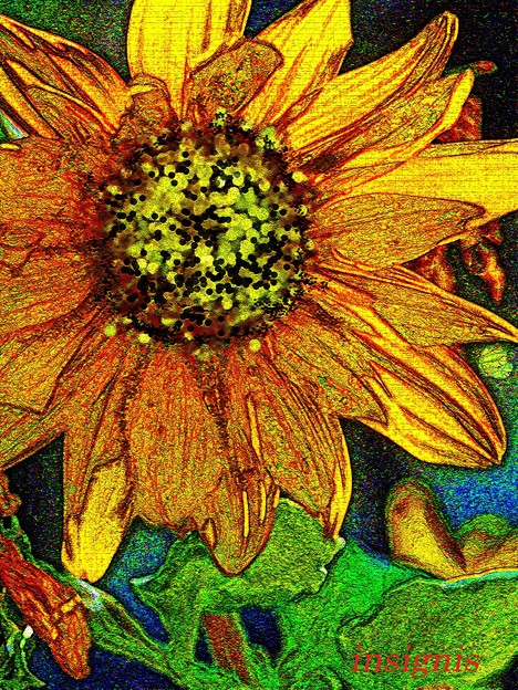 ひまわり Gogh touch......
