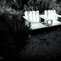 Secret garden.......