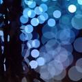 Starry illumination.......