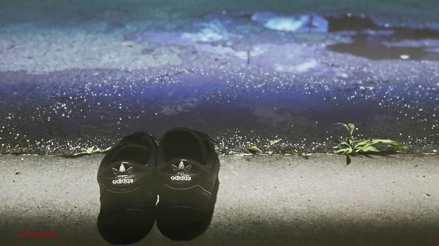 Photos: 日光消毒.......