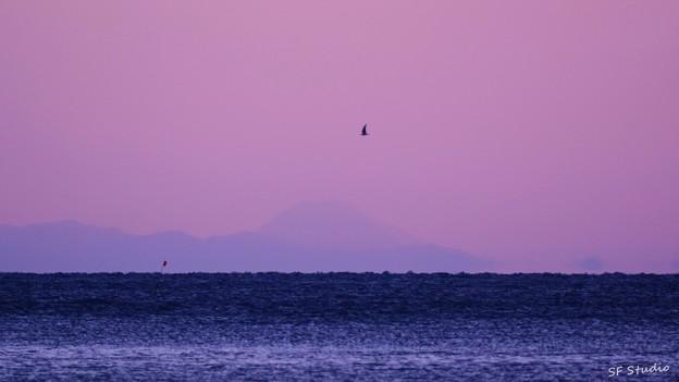 写真: 富士より高く