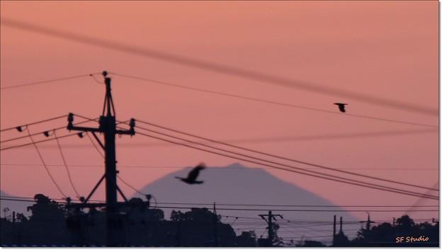 写真: 自宅から見る富士山